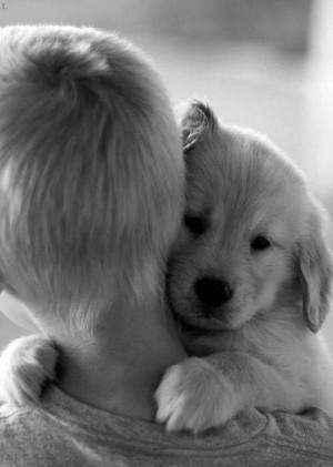 Puppies Exist