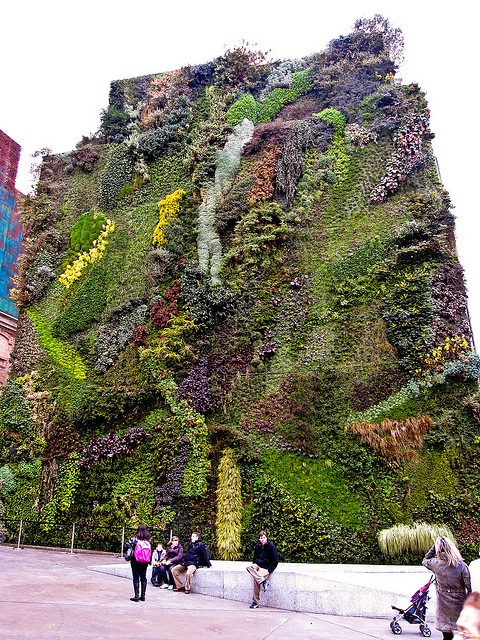 Top 10 happiest vertical gardens the happsters for The living room channel 10 vertical garden
