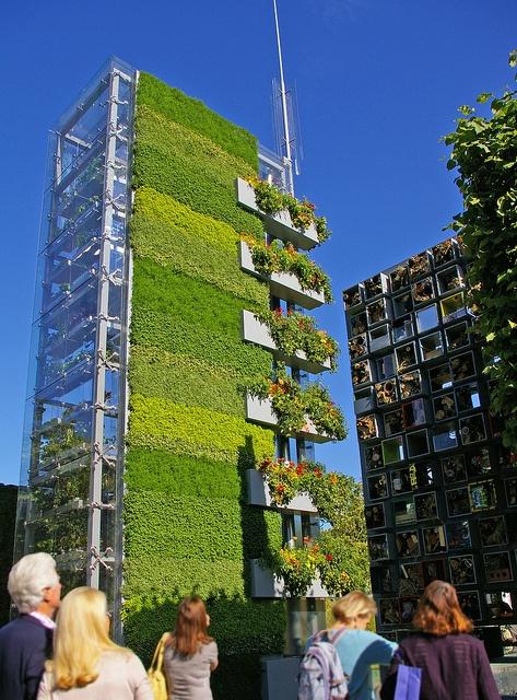 Top 10 Vertical Gardens