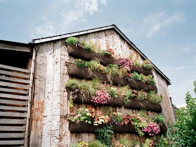 Top 10 Vertical Gardens
