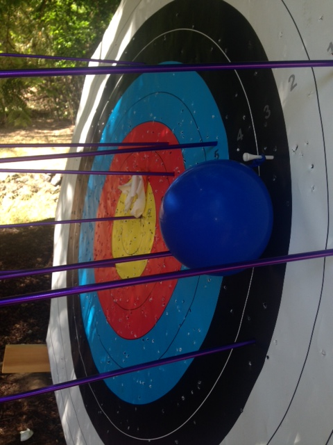 Backyard Archery